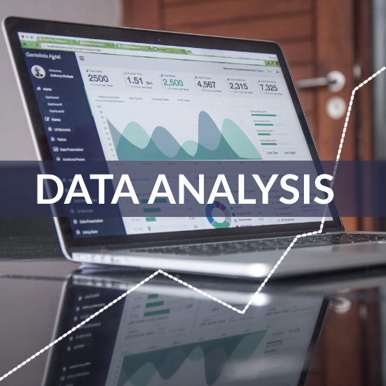 data-analysis-firm